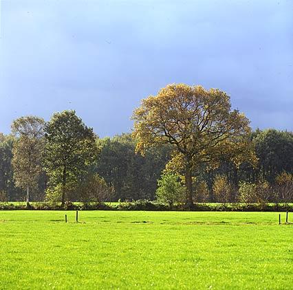 Wim Van Velzen Photography Webarticles What Is Landscape