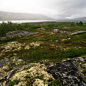 Dovrefjell and Rondane
